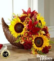 Sunflower cornucopia