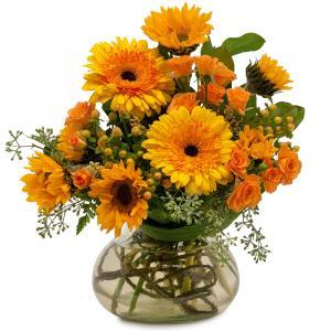 Sunflower Delight  in Zanesville, OH | FLORAFINO FLOWER MARKET & GREENHOUSES