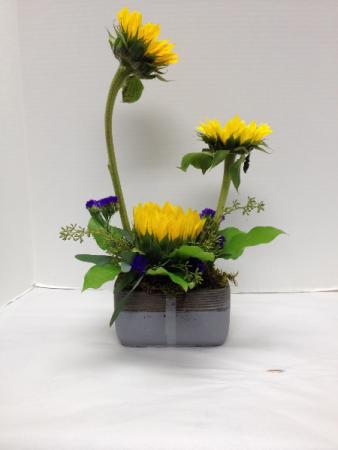 Sunflower Elegance Arrangement
