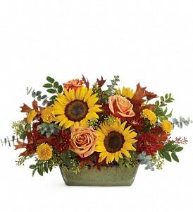 Sunflower Farm Centerpiece  in Fort Lauderdale, FL | ENCHANTMENT FLORIST