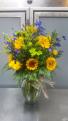 Sunflower Fields  *One Day Advance*