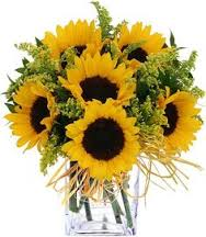 Sunflower Fun