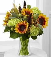 SUNFLOWER GALA Vase Arrangement