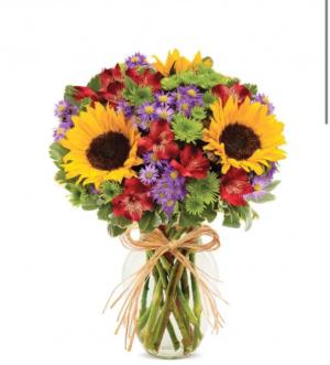 Sunflower Garden  in Saint Cloud, FL | Bella Rosa Florist