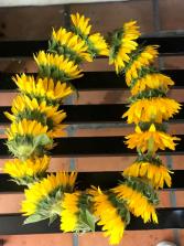 Sunflower Lei Graduation