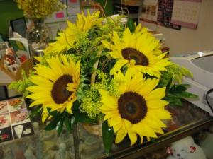 Sunflower Love  in Hialeah, FL | JACK THE FLORIST
