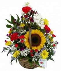 Sunflower Sunshine Basket Arrangement