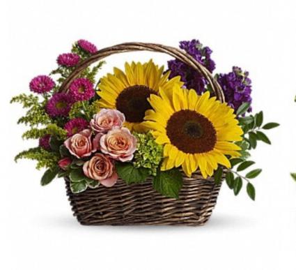 Sunflower mixed fall basket  Basket