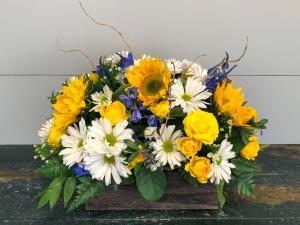 Sunflower Planter  in Bluffton, SC | BERKELEY FLOWERS & GIFTS