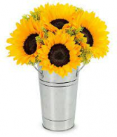 Sunflower Reflections