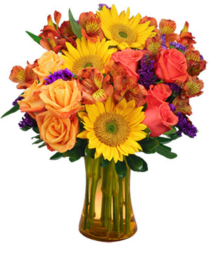 Sunflower Sampler Arrangement in Asheville, NC | THE ENCHANTED FLORIST ASHEVILLE
