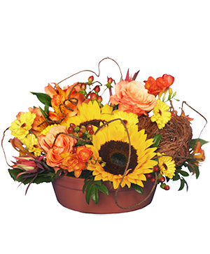 SUNFLOWER SENSATION Centerpiece in Blaine, WA | BLAINE BOUQUETS