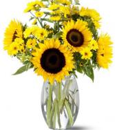 Sunflower Splash Vase