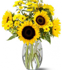 Sunflower Splash Vase