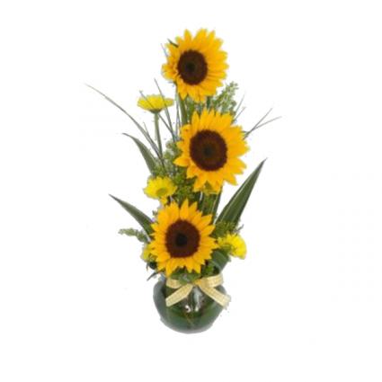 Sunflower Stand arrangement