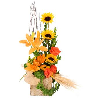 Sunflower Sunrise Flower Arrangement in Oakmont, PA | CHESWICK OAKMONT FLORAL, INC.