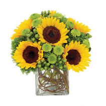 Sunflower Surprise Arrangement