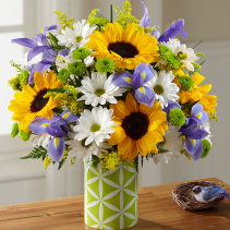 Sunflower Sweetness Arrangement