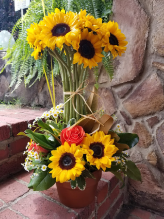 Sunflower topiary fresh flowers