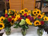 Sunflower wex style
