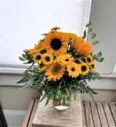 Sunflower Wow!