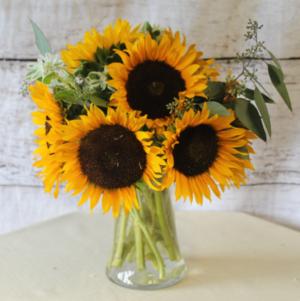 Sunflowers  in Stevensville, MT | WildWind Floral Design Studio