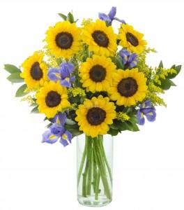 Sunflowers and Iris