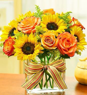 Sunflowers Cubed  in Clearwater, FL | FLOWERAMA