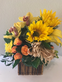 Sunflowers & Cymbidiums