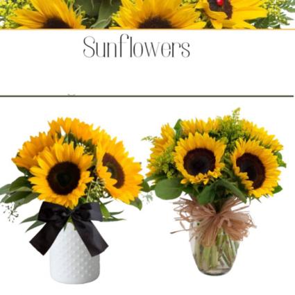 Sunflowers-Designer's Choice