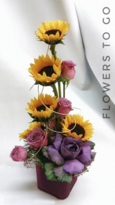 Sunflowers fields Arrangement
