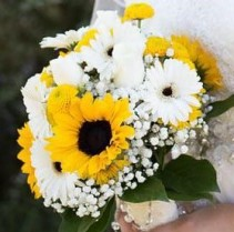 Sunflowers & Gerberas