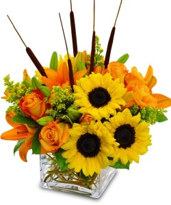 Sunflowers in Cube cube vase with fall flowers in Lebanon, NH | LEBANON GARDEN OF EDEN FLORAL SHOP