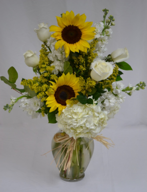 Sunflowers Serene Vase arrangement in Coral Springs, FL | Hearts & Flowers of Coral Springs