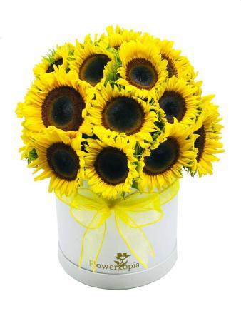 Surpriseeeee!!!Sunflowers Sunflowers Arrengement