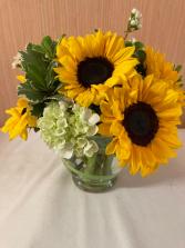 Sunflowers with a Twist Vase Arrangement