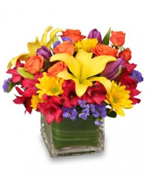 SUN-INFUSED FLOWERS Summer Arrangement in Braintree, MA | BARRY'S FLOWER SHOP INC.