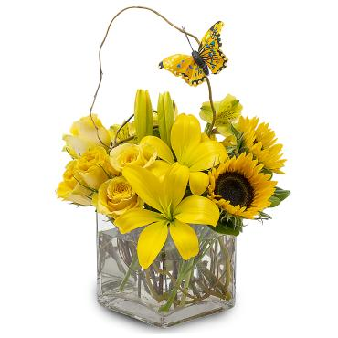 Sunkissed Butterfly Arrangement