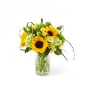 Sunlit Days™ Sunflower Bouquet