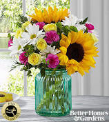Sunlit Meadows  vase arrangement in De Leon, TX | PRICE'S FLOWERS