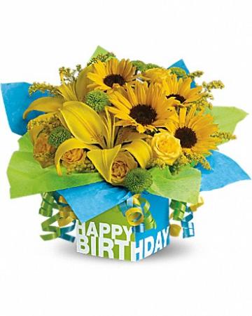 Sunny Birthday Present T27-3