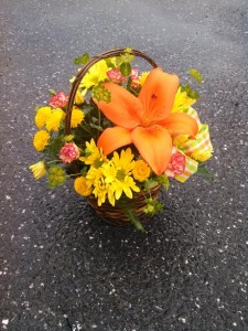 SUNNY DAY BASKET  in Presque Isle, ME | COOK FLORIST, INC.