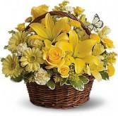 Sunny Day Basket