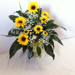 Sunny Day  Peace Lily with Sunflowers  in Salisbury, MD | Flowers Unlimited
