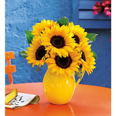 Sunny Day Pitcher