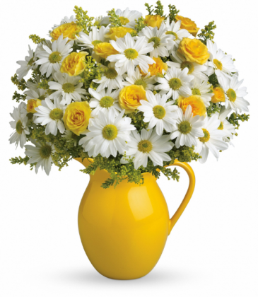 Sunny Day Pitcher of Daisies All-Around Floral Arrangement