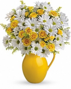 Sunny Day Pitcher of Daisies Telelfora - Two Gifts in One in Springfield, IL | FLOWERS BY MARY LOU