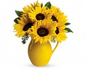 SUNNY DAY PITCHER OF SUNFLOWERS EVERYDAY