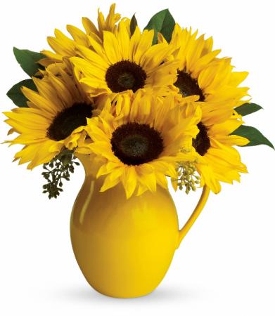 Sunny Day Pitcher of Sunflowers Fresh Arrangement