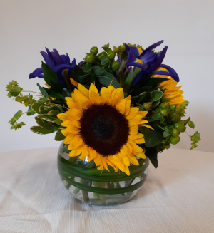 Sunny Days- VAL101 Every Day in East Templeton, MA | Valley Florist & Greenhouse